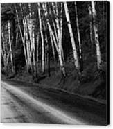 Woodland Drive Canvas Print by Wendell Thompson