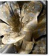 Wren Canvas Print by Yanni Theodorou