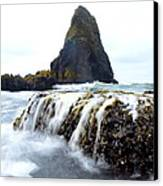 Yaquina Waves Canvas Print by Sheldon Blackwell