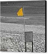 Yellow Hazard Canvas Print by Susan Leggett