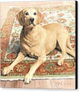 Yellow Lab On A Rug Watercolor Portrait Canvas Print