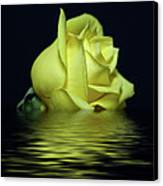 Yellow Rose II Canvas Print by Sandy Keeton