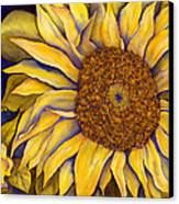 Yellow Sunflower Canvas Print by Diane Ferron
