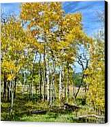 Yellow Tree Canvas Print by Keith Ducker