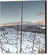 Yellowstone Morning Canvas Print by David Yack