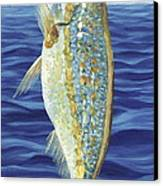 Yellowtail On The Menu Canvas Print