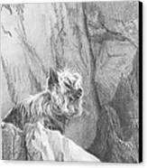 Yorkie Dog On A Cliff Pencil Portrait Canvas Print