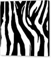 Zebra Print 001 Canvas Print by Kenneth Feliciano