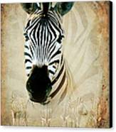 Zebra Profile Canvas Print