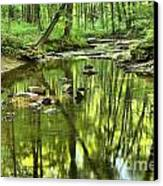 Zen In The Forest Canvas Print by Adam Jewell