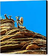 Zion Bighorn Sheep Canvas Print