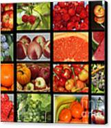 Fruits Collage Canvas Print