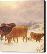 Hard Times 1898 Canvas Print