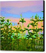 Meadow Magic Canvas Print