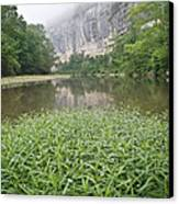 0706-0079 Roark Bluff At Steel Creek 1 Canvas Print by Randy Forrester