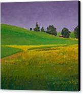 A Sliver Of Canola Canvas Print