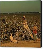 African Americans Picking Cotton Canvas Print