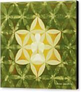 Balance Canvas Print by Jaison Cianelli