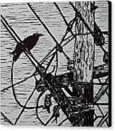 Bird On A Wire Canvas Print by William Cauthern