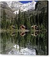 Cabins, Sargents Point, Lake Ohara Canvas Print