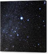 Canis Major Constellation Canvas Print
