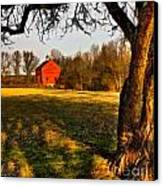 Country Life Canvas Print by Susan Candelario