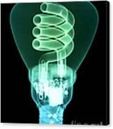 Energy Efficient Light Bulb Canvas Print by Ted Kinsman