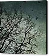 Flock Of Birds Flying Over Bare Wintery Trees Canvas Print