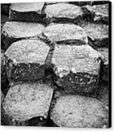 Giants Causeway Stones Northern Ireland Canvas Print