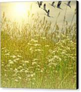 In God's Country Canvas Print