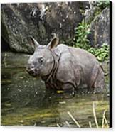 Indian Rhinoceros Rhinoceros Unicornis Canvas Print by Konrad Wothe