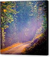 Into The Light Canvas Print by Donna Duckworth