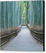 Japan Kyoto Arashiyama Sagano Bamboo Canvas Print by Rob Tilley