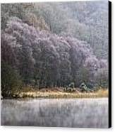 Lower Lake, Glendalough, County Canvas Print