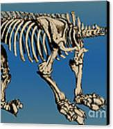 Megatherium Extinct Ground Sloth Canvas Print by Science Source