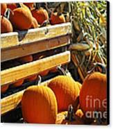 Pumpkins Canvas Print by Elena Elisseeva