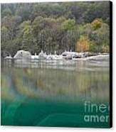 River With Trees Canvas Print