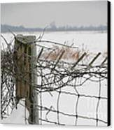 Snow Fence  Canvas Print by Sandra Cunningham