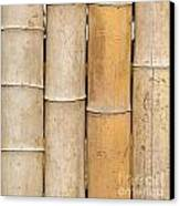 Straight Bamboo Poles Canvas Print