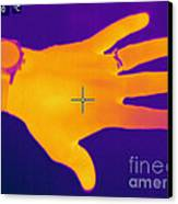 Thermogram Of A Hand Canvas Print by Ted Kinsman