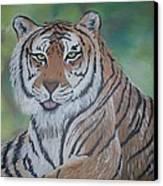 Tiger Canvas Print by Shadrach Ensor