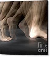 Walking Canvas Print by Ted Kinsman