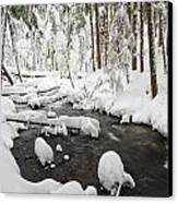 Winter Snow Along Still Creek In Mt Canvas Print