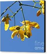 Yellow And Blue Canvas Print