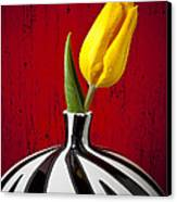 Yellow Tulip In Striped Vase Canvas Print
