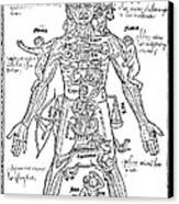 Zodiac Man, Medical Astrology Canvas Print by Science Source
