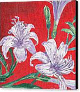 Flowers Canvas Print by Kostas Dendrinos