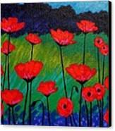 Poppy Corner Canvas Print by John  Nolan