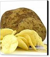 Potato Chips Canvas Print by Blink Images