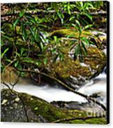 Rhododendron And Waterfall Canvas Print by Thomas R Fletcher